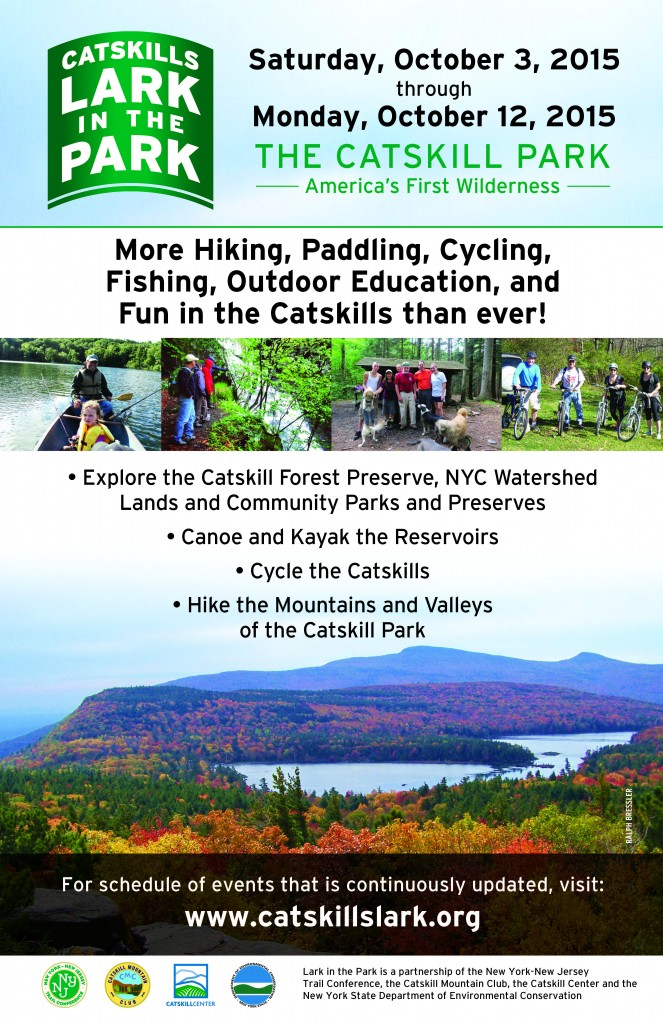 2015 Catskills Lark in the Park Flyer #1